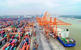Điều gì giúp cổ phiếu cảng biển logistic vững vàng trước nhịp chỉnh của thị trường?