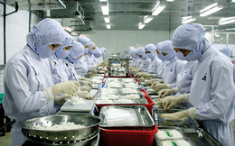 Kiên Hùng (KHS): Các thị trường xuất khẩu phục hồi, quý 2 lãi 20 tỷ đồng, cao gấp 11 lần cùng kỳ