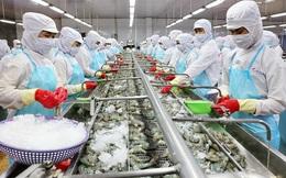 Xuất khẩu thuỷ sản năm 2021 có thể cán đích 9 tỷ USD