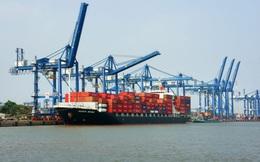 Nguyên do tắc cảng nghiêm trọng khu vực phía Nam: Covid-19, chủ hàng chờ giảm giá hay tắc nghẽn từ Singapore và Trung Quốc?