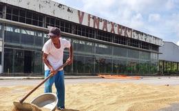 Bộ KH&ĐT đang xây dựng chương trình phục hồi kinh tế