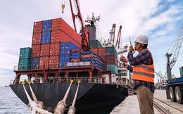 Kinh doanh vận tải có hiệu quả, Vinalines (MVN) báo lãi quý 2/2021 đạt 375 tỷ đồng, cao gấp 6 lần cùng kỳ năm trước