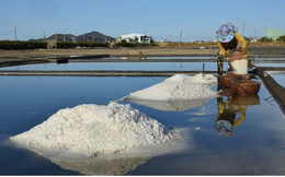 Giá muối xuống thấp, người dân Bình Định gặp khó