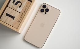 iPhone 11, iPhone 12, iPhone XR... đua nhau hạ giá