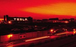 """Tesla """"ngã ngựa"""" và bài học lớn cho các doanh nghiệp nước ngoài khi làm ăn tại Trung Quốc"""