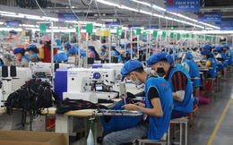 Việt Nam cần hệ thống như 'đường ống' để hút lao động đến các doanh nghiệp sản xuất