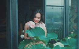 Cặp vợ chồng trẻ trồng sen trên căn penthouse tầng 30: Nhìn thành quả ai ai cũng ngỡ ngàng và ngưỡng mộ