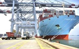 Hãng tàu ngoại tự tăng giá cước lên 5-7 lần, Cục Hàng hải kiến nghị sửa đổi quy định