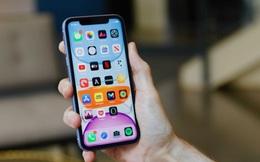 Hàng loạt iPhone cũ đang giảm giá sâu, rất đáng để mua