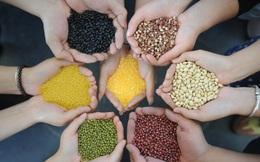 Ngũ cốc rất tốt cho cơ thể nhưng có 3 cách ăn sai có thể gây hại sức khỏe mà nhiều người mắc phải