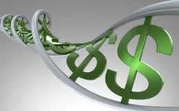TNS Holdings chốt danh sách cổ đông trả cổ tức bằng tiền và cổ phiếu tổng tỷ lệ 50%
