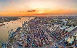Cổ phiếu Cảng biển tạo sóng 3 sàn, nhiều mã tăng bằng lần từ đầu năm 2021