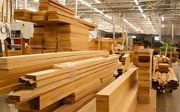 Doanh nghiệp ngành gỗ bứt phá ngoạn mục trong quý 2 bất chấp dịch Covid-19