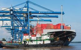 Cảng Cát Lái tắc buộc doanh nghiệp phải đổi sang Cái Mép, chủ hãng vận tải gặp khó: 'Nếu chuyển cảng thì ai là người trả thêm phí đường bộ, phí sà lan?'