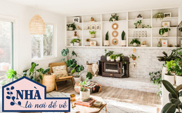 Chuyên gia nội thất gợi ý 5 cách đơn giản giúp bạn mang cả thiên nhiên vào không gian sống, vừa thẩm mỹ vừa hợp phong thủy