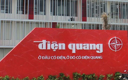 Điện Quang (DQC): Hợp tác chiến lược với Schréder, dự kiến thu về 10% doanh số chiếu sáng cao cấp trong năm đầu tiên thực hiện
