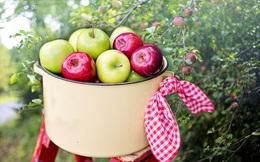 """9 món """"khoái khẩu"""" của gan: Càng ăn uống nhiều, càng giữ được trạng thái khoẻ mạnh cho bộ phận """"khổ"""" nhất nhì cơ thể"""