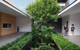Cách bố trí tường thông minh giúp nhà cấp 4 có chỗ trồng cây, nuôi cá