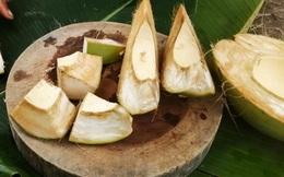 Lạ lùng những thứ chỉ có ở Việt Nam: Dừa ăn vỏ bỏ nước, mít dài cả mét, thanh long thơm mùi nhãn,...
