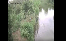 CLIP: Thót tim cảnh cứu sống cháu bé chìm giữa hồ nước