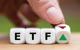 VCI, SAB, DGC và KDC sẽ lọt rổ ETF trong kỳ review tháng 9?