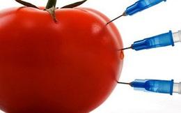 Nhận biết thực phẩm biến đổi gen qua các dấu hiệu nào?