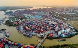 Tầm quan trọng của cảng Cát Lái: Chiếm 86% sản lượng container xuất nhập khẩu của TP HCM, riêng công ty khai thác 1 cầu cảng cũng lãi gần trăm tỷ đồng mỗi năm