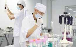 Y tế Việt Mỹ (AMV): 6 tháng lãi 14 tỷ đồng, hoàn thành 6% kế hoạch cả năm 2021