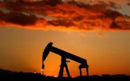 Giá dầu lao dốc trong chuỗi ngày giảm giá dài nhất 18 tháng