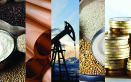 Thị trường ngày 20/8: Nguyên liệu quan trọng đồng loạt giảm giá, dầu lao dốc phiên thứ 6, thép mất hơn 7%, đồng thấp nhất 4 tháng
