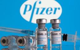 Pfizer sẽ đẩy nhanh tiến độ giao vaccine, sẵn sàng hợp tác với Việt Nam