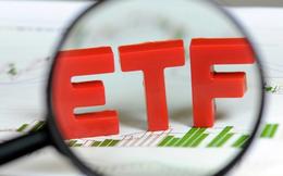 Hai quỹ ETF ngoại sẽ thêm mới VCI, KDC và DGC trong kỳ cơ cấu tháng 9?