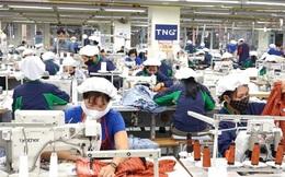 TNG sắp phát hành gần 6,4 triệu cổ phiếu trả cổ tức năm 2021 với tỷ lệ 8%