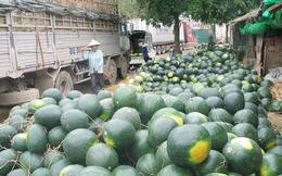Nông sản Việt ùn ứ tại cửa khẩu, Bộ Công Thương gửi công thư cho phía Trung Quốc