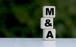 M&A công ty tài chính và làn sóng thứ 2: Vì sao hấp dẫn khối ngoại?