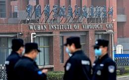 Giới tình báo Mỹ tranh cãi về nguồn gốc Covid-19 từ phòng thí nghiệm ở Vũ Hán
