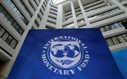 IMF thông qua gói hỗ trợ tài chính lớn nhất lịch sử 650 tỷ USD, Việt Nam có thể nhận được bao nhiêu?