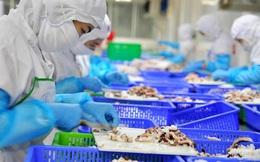VASEP: Nguy cơ gãy đổ chuỗi sản xuất, xuất khẩu thủy sản ngay trước mắt