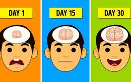 12 cách đơn giản giúp não bộ được nghỉ ngơi, tăng cường trí nhớ và sự thông minh tăng vọt