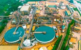 Masan High-Tech Materials (MSR): Hợp nhất với H.C.Starck, quý 2 lãi gộp 554 tỷ đồng