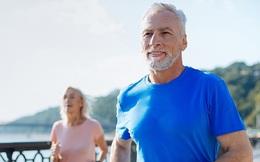 """5 quãng đời cần chú ý đến những thói quen để nâng cao sức khỏe, kéo dài tuổi thọ: 30 để ý dạ dày, 40 """"ngó xem"""" sụn khớp đến tuổi 50 nhớ """"dò"""" khối u"""