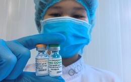 Đang đàm phán để đưa vắc xin Nanocovax của Việt Nam sang thử nghiệm và sản xuất đại trà tại Ấn Độ