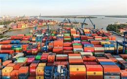 Khẩn cấp cứu hàng hoá ùn tắc tại cảng Cát Lái, đề nghị giảm giá lưu container, lưu bãi