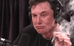 """Elon Musk không hề ba hoa, đây là """"át chủ bài"""" để Tesla luôn ở thế bất bại với mọi đối thủ trên thị trường ô tô điện"""