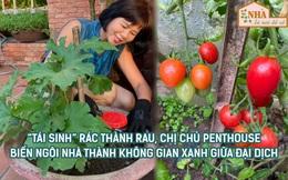"""""""Tái sinh rác"""" để đổi lại rau xanh mướt, cây trĩu quả, bà chủ penthouse biến ngôi nhà thành không gian sống vô cùng ý nghĩa giữa mùa dịch"""