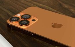 Những điều thú vị về iPhone mà có thể bạn chưa biết?