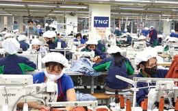 Dệt may TNG báo lãi 8 tháng đầu năm 142 tỷ đồng, hoàn thành 81% kế hoạch lợi nhuận năm