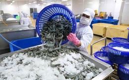 Xuất khẩu thủy sản tháng 8/2021 giảm mạnh 36%, dự báo tiếp tục đình trệ trong tháng 9