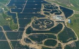 Thêm một doanh nghiệp Trung Quốc đầu tư gần 1 tỷ USD sản xuất pin mặt trời tại Việt Nam, công ty mẹ doanh thu hơn 5 tỷ USD mỗi năm