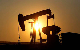 Giá dầu vượt 80 USD, Nhà Trắng điện đàm với OPEC